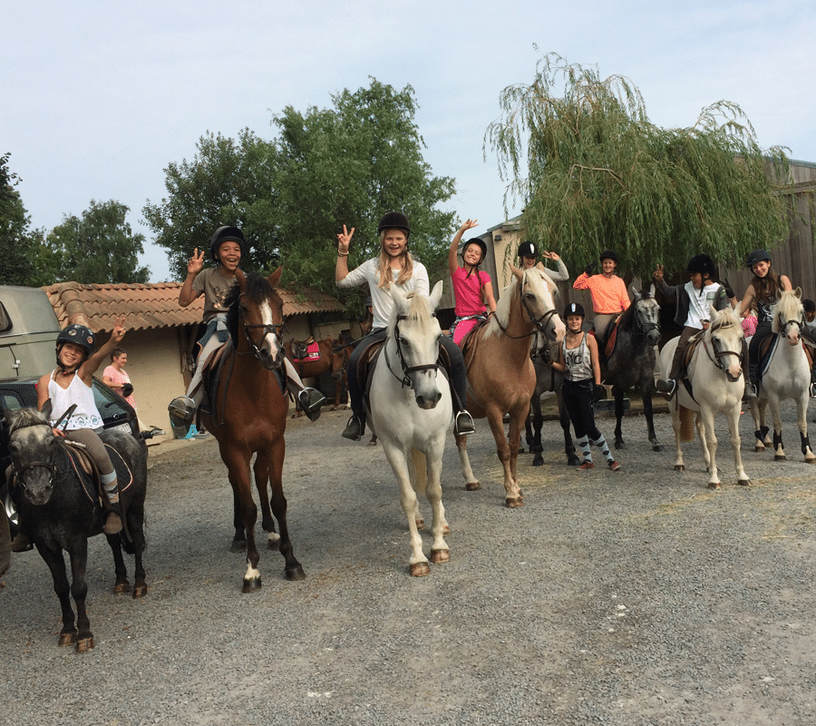 cours_equitation